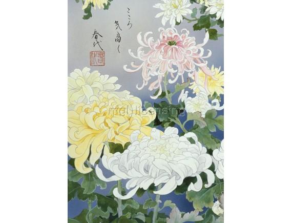 Картина на холсте - Хризантемы